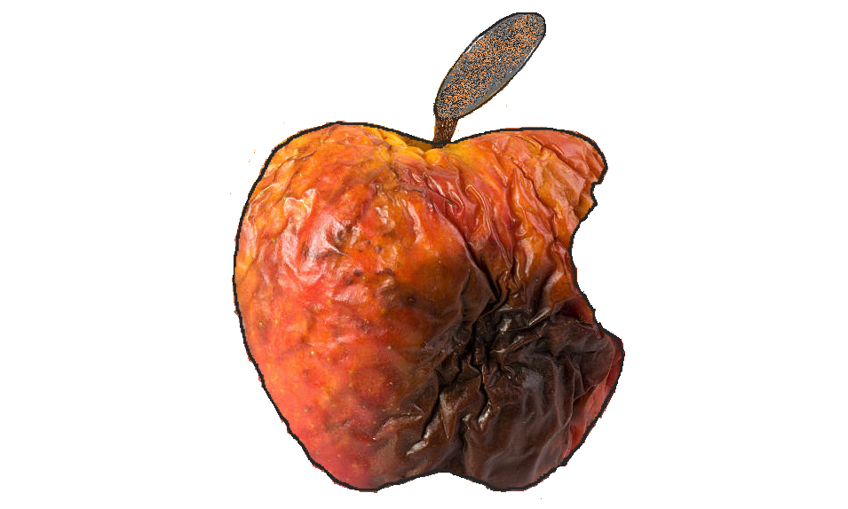 apple rot